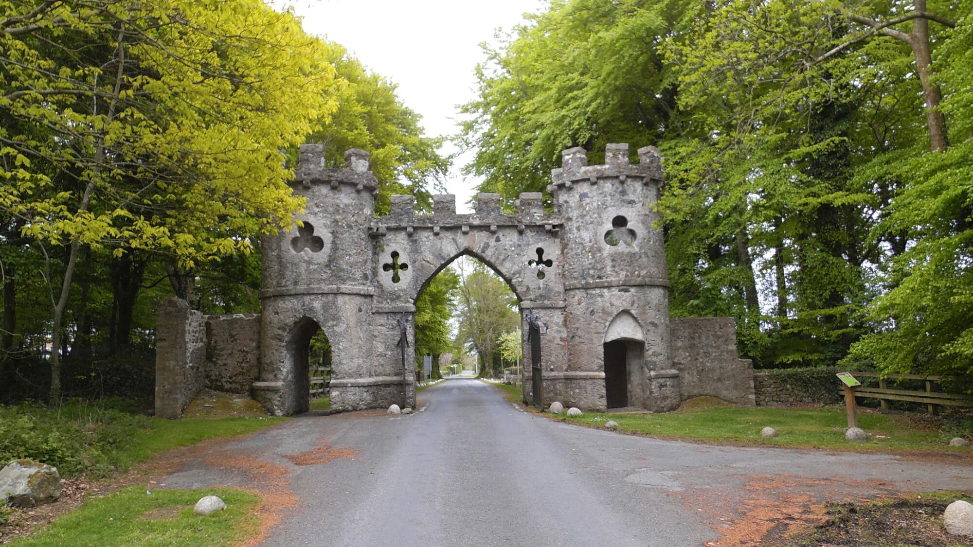 Rundreise Nordirland Tag 1 – Der verfluchte Wald