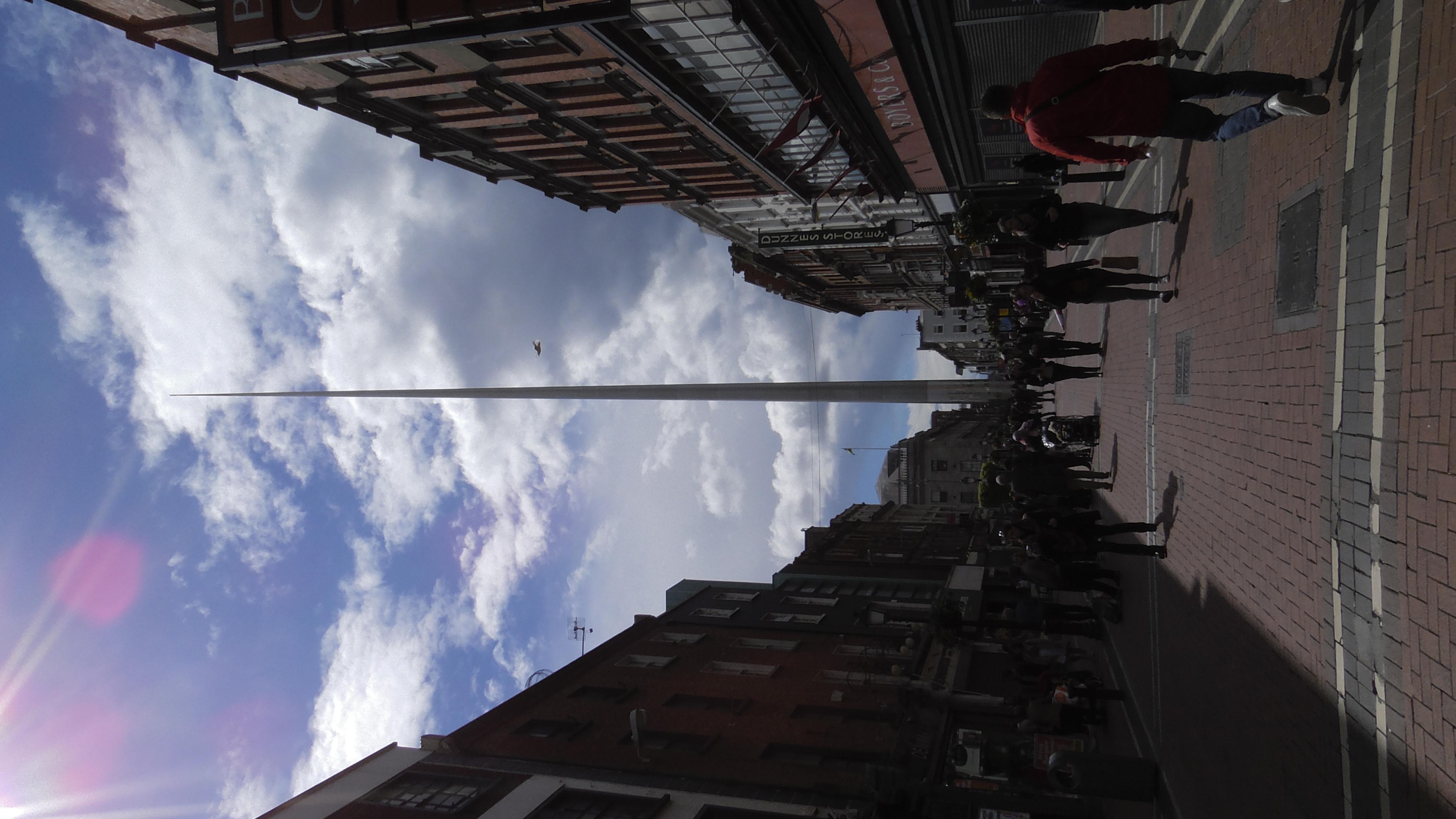 Dublin Needle