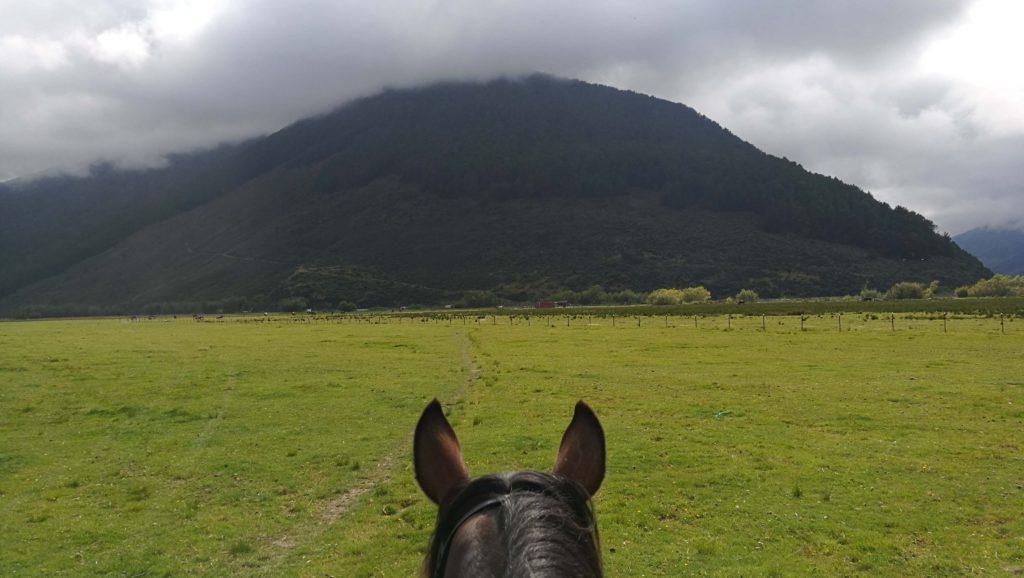 Neuseeland #4 – Trilogy Loop Ausritt